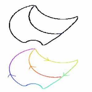 Eulerin Lause